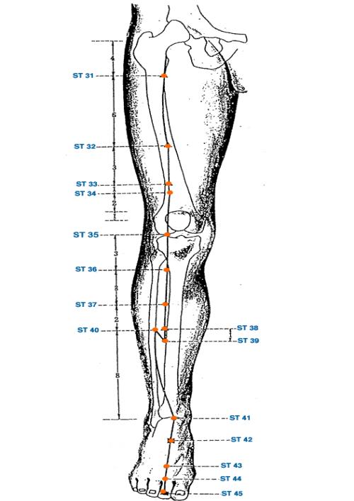 болит позвоночник от шеи до лопаток Боль в шее, между лопаток - Причины, симптомы и лечение. МЖ.
